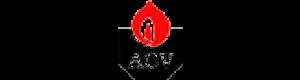 Газовые котлы Acv
